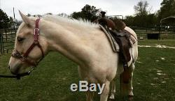 14 inch Western saddle, Full Quarter Horse Bars, Used But In Good Condition
