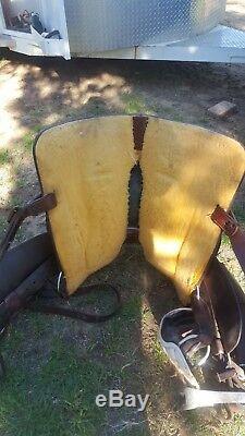 Custom Martin saddle, 15.5, QH bars, ostrich seat
